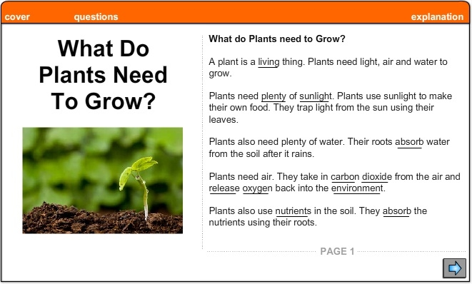 What Is A Plant? - Lessons - Tes Teach