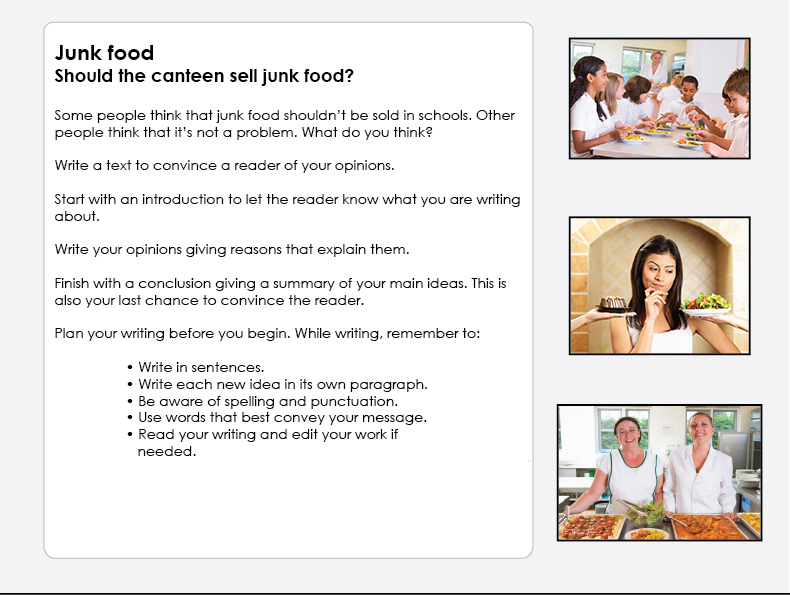 persuasive essay about junk foods