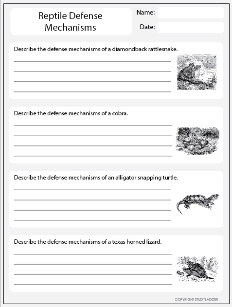 Reptile Defense Mechanisms Worksheet 2 Studyladder Interactive Learning Games