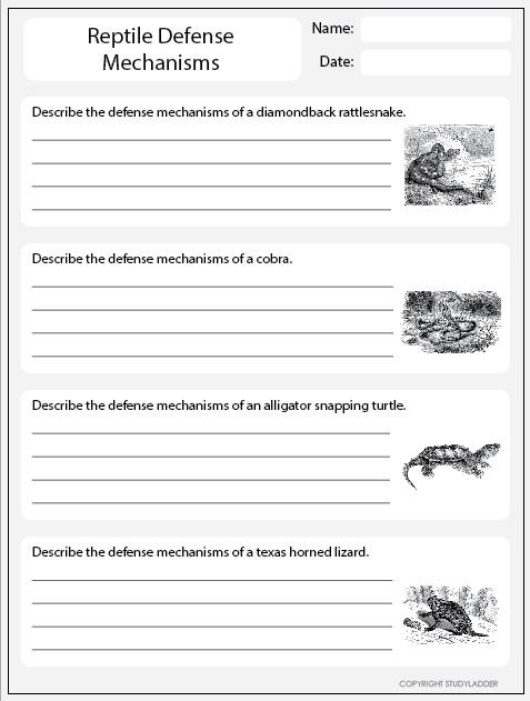 Reptile Defense Mechanisms Worksheet 2 Studyladder
