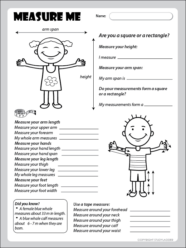 Measurement Activity 5 Worksheet - Studyladder Interactive Learning ...