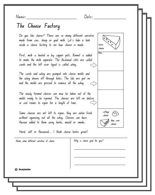 The Cheese Factory -Reading Response Activity Sheets ...