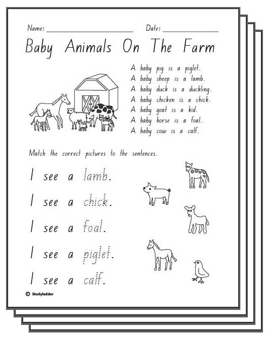 Lesson Plan For Farm Animals - Best Image Atlproms.com