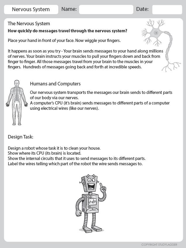 Nervous System Design A Robot Theme Based Learning Skills Online