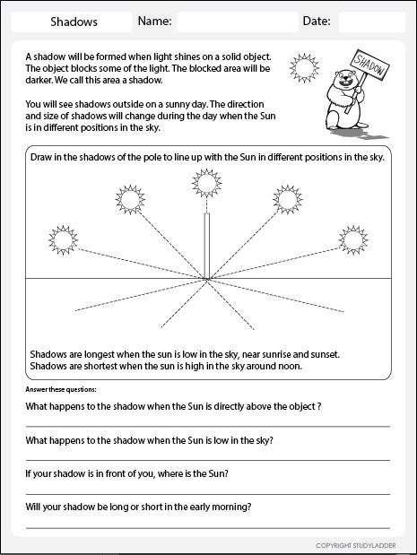Shadow Length Worksheet Theme Based Learning Skills Online