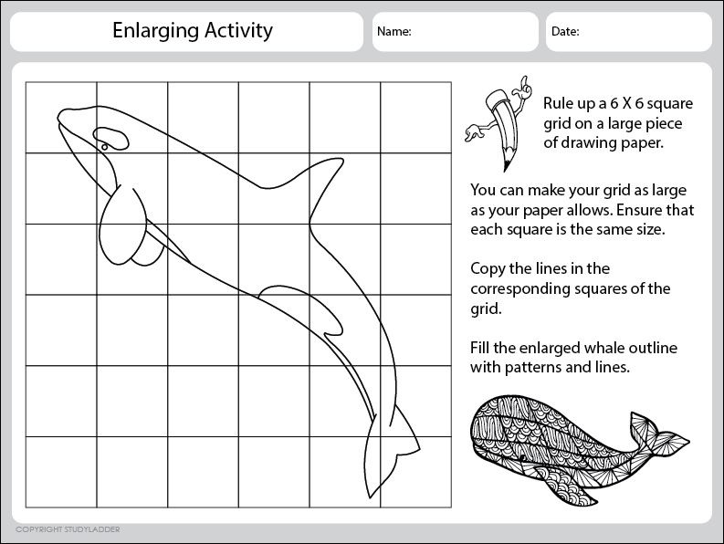 Whale Enlargement Activity- Worksheet 1 - Studyladder Interactive ...