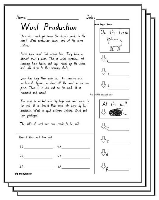 Wool Production -Reading Response Activity Sheets - Studyladder ...