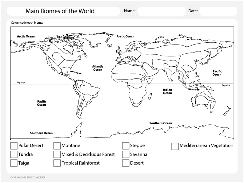 World Map Biomes Science skills online interactive activity lessons – Biomes of the World Worksheet