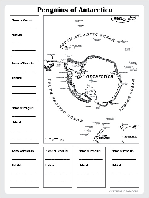 English worksheets: Facs about Antarctica