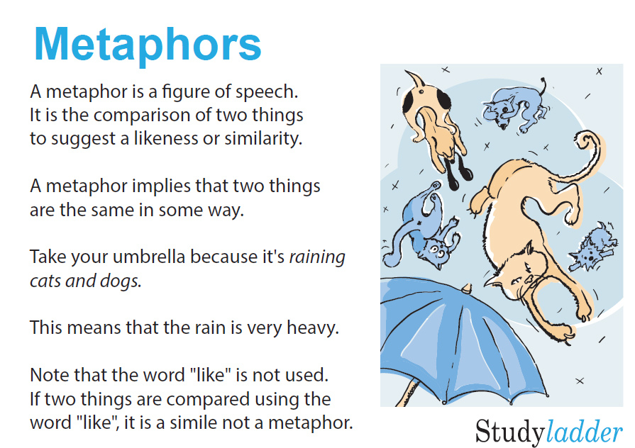 Metaphors English Skills Online Interactive Activity Lessons