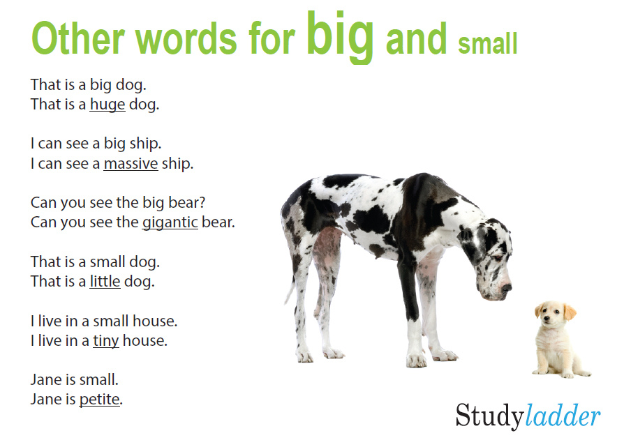 Other Words For Big And Small, English Skills Online, Interactive